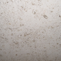 Navarra Beige limestone tile.Beige with flecks and small fossils.