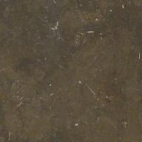 Thames Mud Limestone